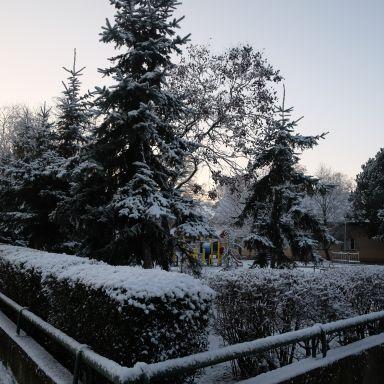 Zimné ráno 2021