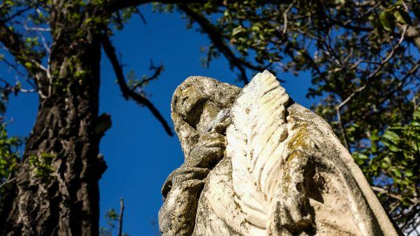 Dobrovoľná zbierka na rekonštrukciu sochy sv. Tekly