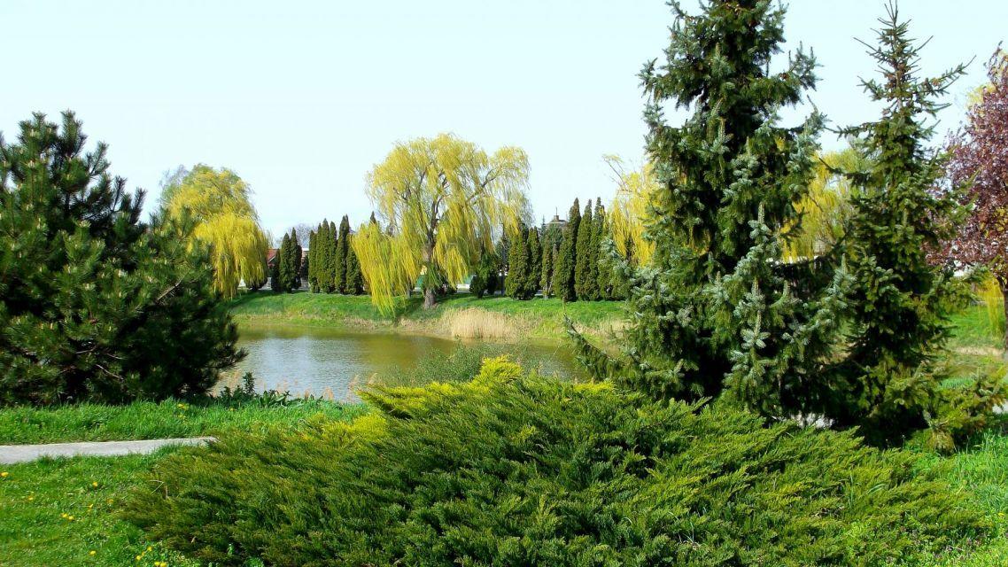 Revitalizácia rybníka Vermek - krajinno-architektonická štúdia